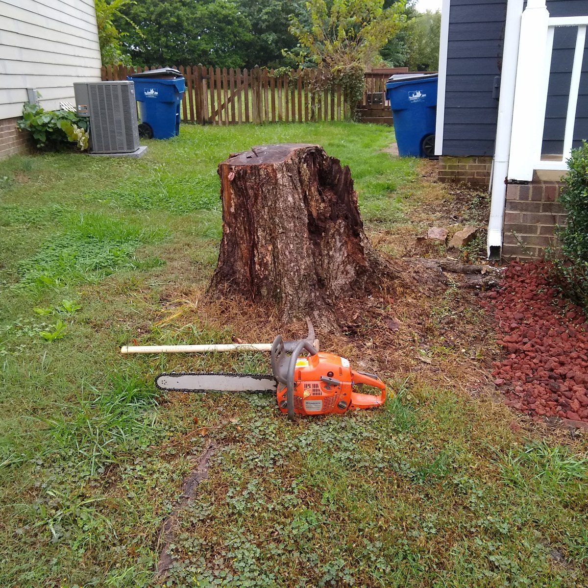 Raleigh Stump Grinding